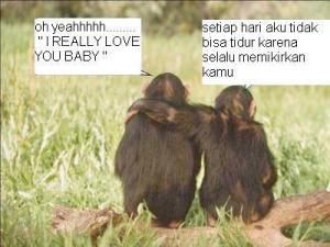 Ber 'couple'